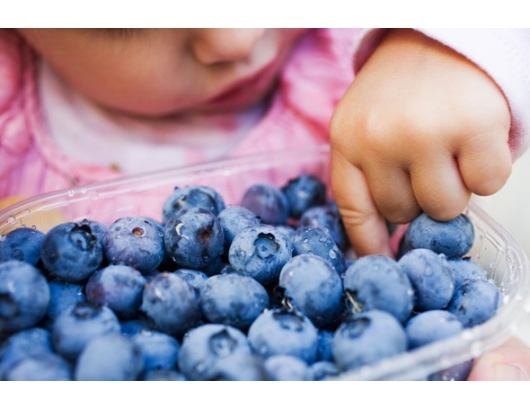 Blueberries may help improve attention in children, says study