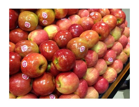 Chile: Fresh apple exports to reach 739,000 tons in marketing year 2018/19